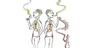 اغلب افرادی که قلیان میکشند فکر میکنند قلیان اعتیادآور نیست چراکه آن را بهصورت گاهگاهی و موقعیتی استعمال میکنند اما این تفکری نادرست است. قلیان تقریباً برابر 10 نخ سیگار در هر بار مصرف است.